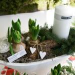 plantering1