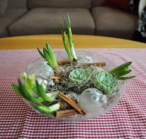 julgrupp_lökväxter1