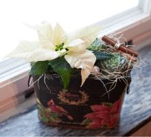 plantering_plåtburk