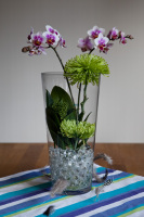 orkide-vattenpärlor